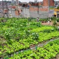 Construindo uma alternativa de transformação no Brasil e no Mundo